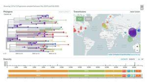 Mapa genomiczna epidemiologii wirusa