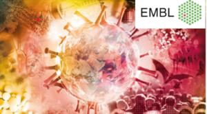 Ilustracja komórki wirusa i logotyp EMBL.